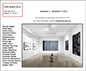 isabellegroskowal-past-exhibition-idea-miami-2014-link